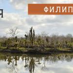 18.10.04. pnk-migove-pod-juzhniq-krast