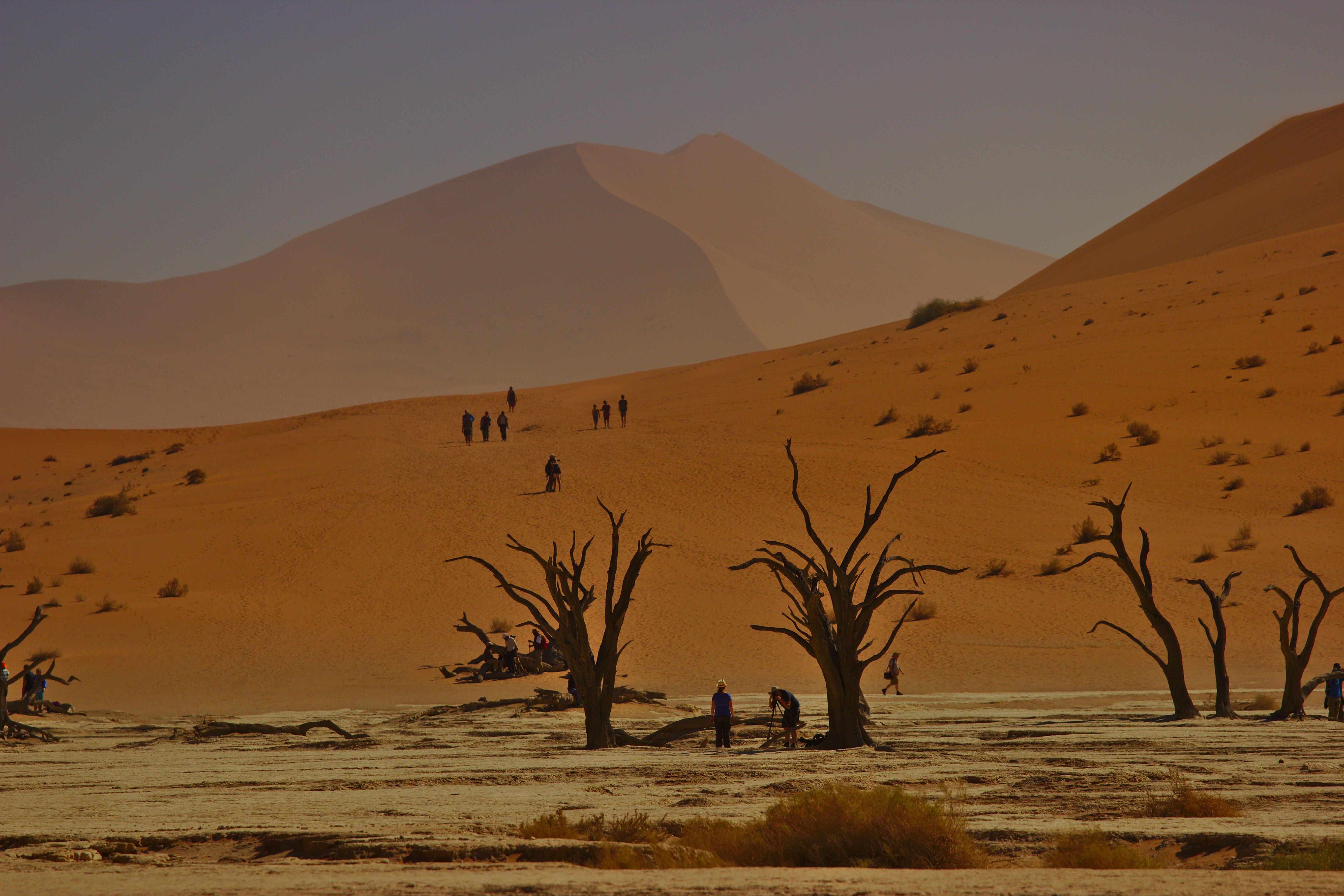 19.03.11 2500 km namibiq
